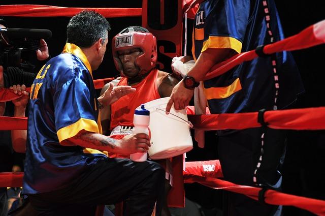 boxer-652391_640