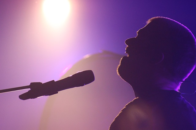 singer-1595864_640