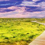 landscape-2114294_640