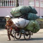 vietnam-1262809_640