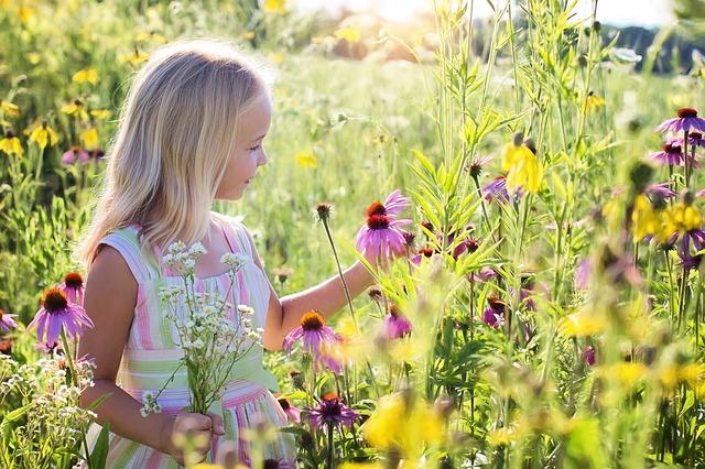 little-girl-2516578_640