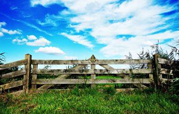gate-1562595_640