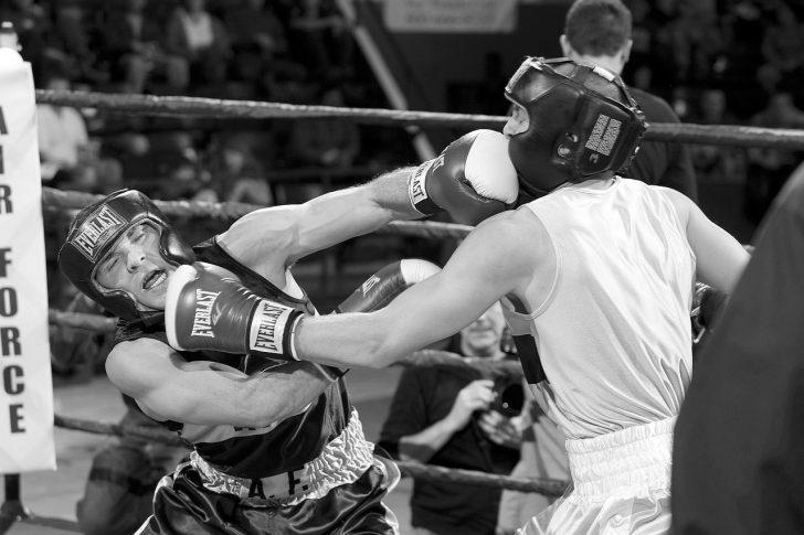 boxers-870337_1280.jpg