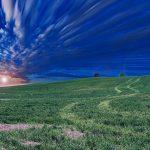 field-768601_640-2.jpg