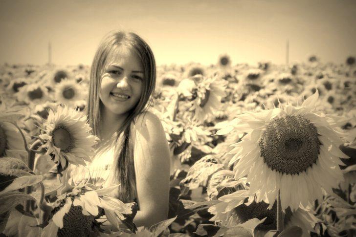 sunflower-834994_1280.jpg