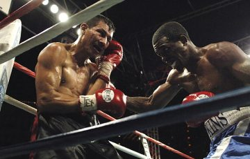 boxer-1430485_640