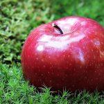apple-1702331_640