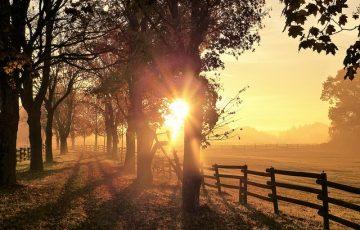 autumn-1800558_640