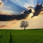 countryside-2175353_640