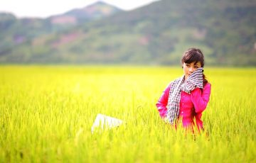 countryside-1721387_640