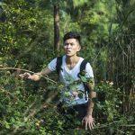 the-wild-1833566_640